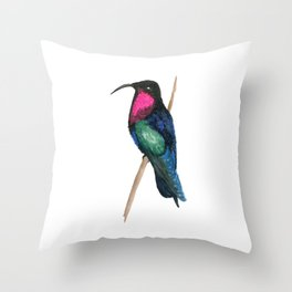 Purple-throated Carib Throw Pillow