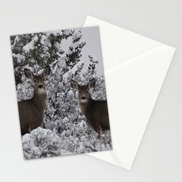 Mule Deer in the Oregon Snow Stationery Cards