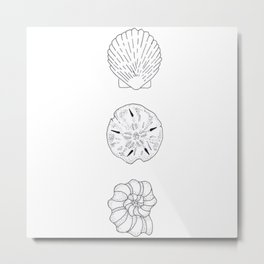 Seashells Trio Illustration — Shells and Sand Dollar Design Metal Print