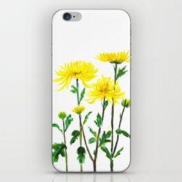yellow chrysanthemum iPhone Skin