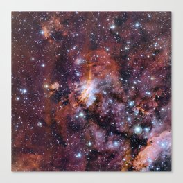 Prawn Nebula Canvas Print