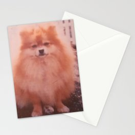 Perry The Pekingese Stationery Cards