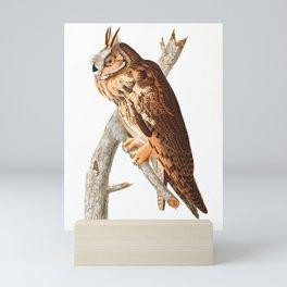 Long Eared Owl by John James Audubon Mini Art Print