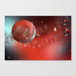 MOW1 Canvas Print