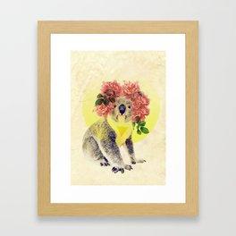 Australian Icon: The Koala Framed Art Print