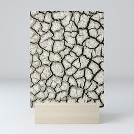 Parched land in the Regional Natural Park of Camargue Mini Art Print