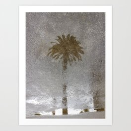 Rainy Day Palm Tree Art Print