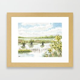 Cape Canaveral National Sea Shore 2 Framed Art Print