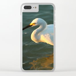 In The Evening Sun Clear iPhone Case