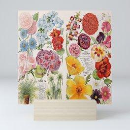 Iowa Seed Co vintage flowers Mini Art Print