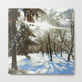 Winter landscape in the park. Metal Print