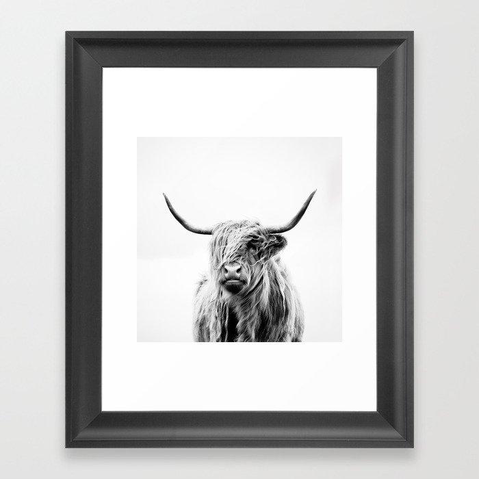 portrait of a highland cow Gerahmter Kunstdruck