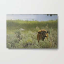 Playing the Field Metal Print