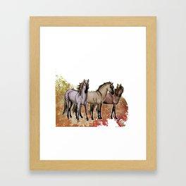 Stripped Horses- Sorraia Framed Art Print
