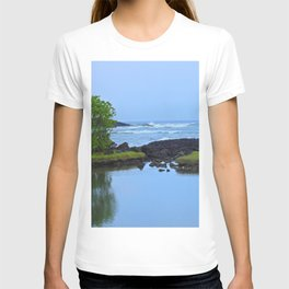 HIdden Treasures T-shirt