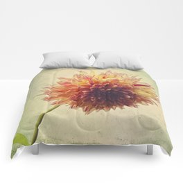 Small Grandness Comforters