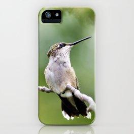 Charming Hummingbird iPhone Case