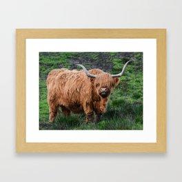 Highland Cow Framed Art Print