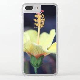 Sun searching Chinese Hibiscus Flower Clear iPhone Case