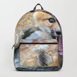 Watercolor Fox, Red Fox 03, Union Reservoir, Boulder Backpack