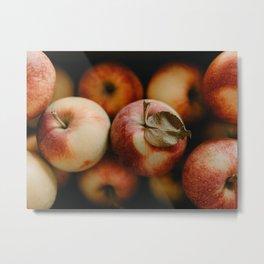 Apple Still Life Metal Print