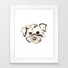 Bichon Frise Framed Art Print