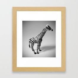 Zebraff #2 Framed Art Print