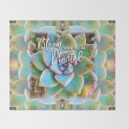 """Bloom where you are planted"" mint green & turquoise cactus close-up photo Throw Blanket"