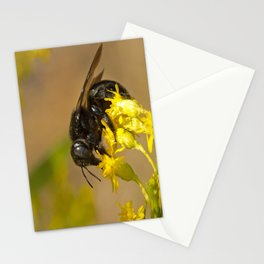 Bee Lover Stationery Cards