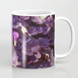 Pretty in Purple Flowers Coffee Mug