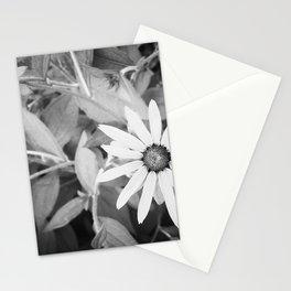Black-eyed Susan 1 Black and White jjhelene Stationery Cards
