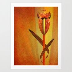 Design Flower Art Print