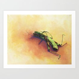 Insect death Art Print