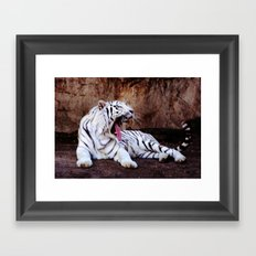 Tiger Yawn Framed Art Print