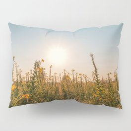 Uncultivated field in the Lomellina countryside at sunset full of yellow flowers Pillow Sham
