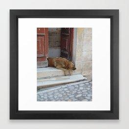 Sleepy Lazy Dog Framed Art Print