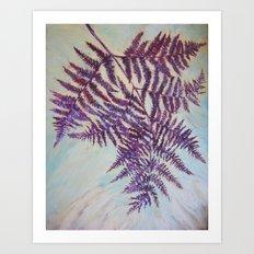 Fern Study 15 Art Print