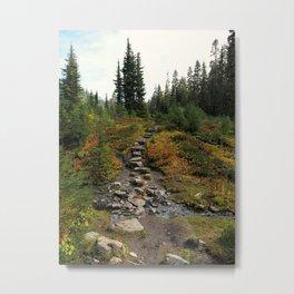 A stony path Metal Print