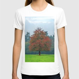 Lonely Little Red Tree In Wood Clearing Ultra HD T-shirt