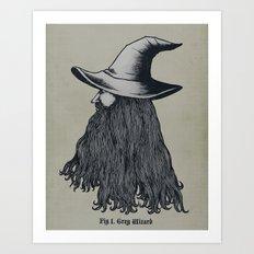 Grey Wizard Art Print