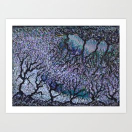 Olive Tree Fields Art Print