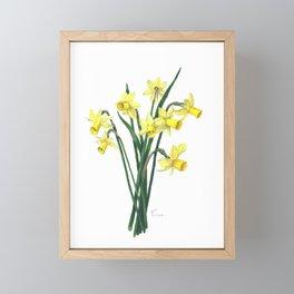 Little Daffodils Botanical Illustration Framed Mini Art Print