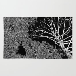 overhead, drawing, white on black Rug