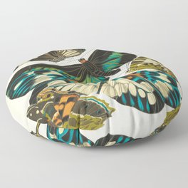 EA Seguy Papillons Vintage Scientific Insect Butterfly Biological  Species Anatomy Illustration Floor Pillow