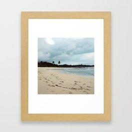 Palm trees & beaches Framed Art Print
