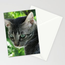 """Vermeer CAT """"Girl with a Pearl Earring"""" Stationery Cards"""