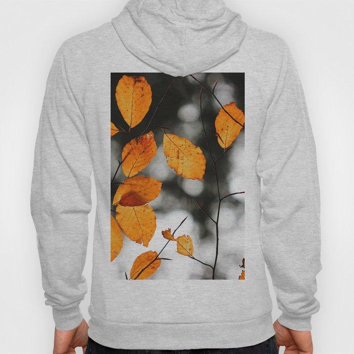 Orange Leafs (Color) Hoody
