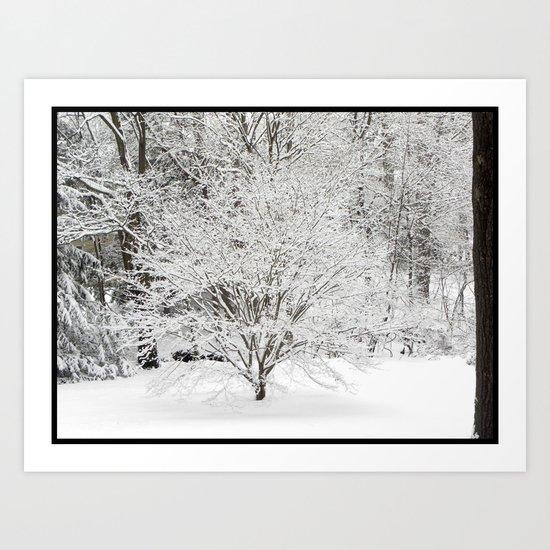Irohamomiji: Winter Art Print