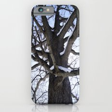Winter Foresty iPhone 6s Slim Case