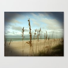 Morning sea oats Canvas Print